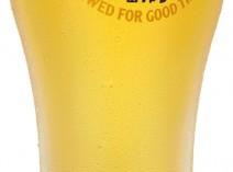 京都でも珍しいキリンの氷点下ビール アイスコールド一番搾り 490円(税別)
